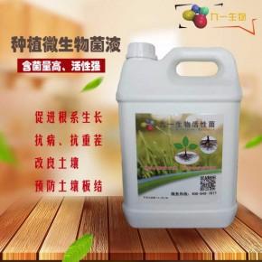 农业种植微生物菌剂,抗病抗重茬