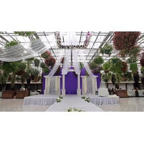 玻璃连栋生态采摘园温室大棚建设厂家