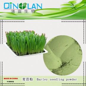 麦苗提取物 抗氧化润肠通便麦苗浓缩粉
