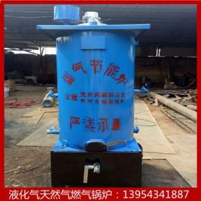 博远供应冬季供暖专用燃气锅炉 馒头房酿酒厂专用炉