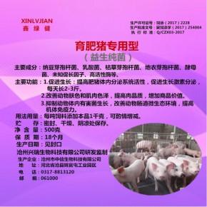 育肥猪专用型益生纯菌500g饲料添加剂