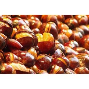 供应玉林市大红袍板栗苗和九家种板栗苗农业合作社