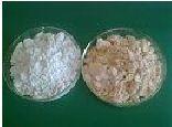 长白朝鲜族自治县金缘硅藻土制品有限公司